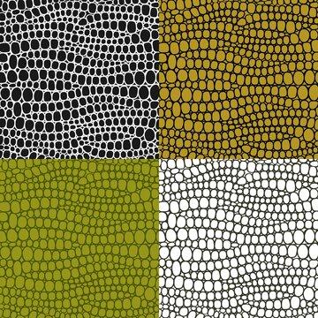 Crocodile skin pattern. Abstract crocodile skin pattern on white background