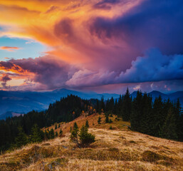 Wall Mural - Incredible summer sunset in a mountain valley. Location place of Carpathian mountains, Ukraine.