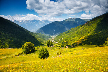Wall Mural - Stunning summer view of the alpine meadows at the foot of Mt. Ushba. Location place Upper Svaneti, Georgia, Europe.