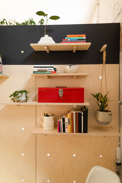 Shelving with books and plants in small business workspace