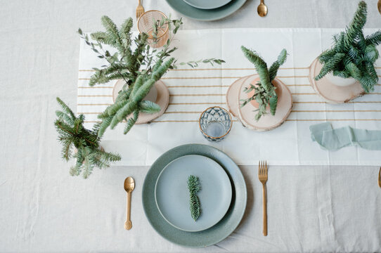 Conifer twigs on banquet table