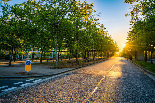 Empty road with morning sun flare