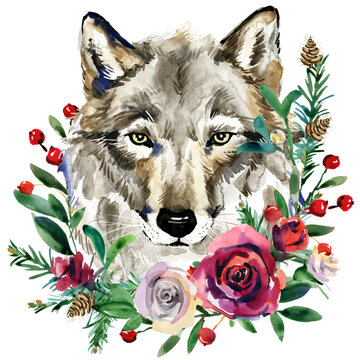 Wolf realistic watercolor portrait with wreath winter forest plants and berryes