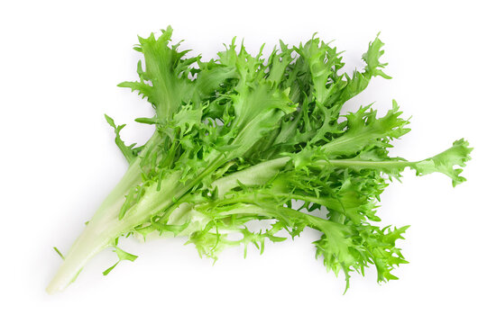 Fresh green leaves of endive frisee chicory salad isolated on white background with clipping path and full depth of field. Top view. Flat lay