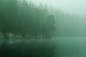 Misty morning by the forest lake. Trees and surroundings are reflected on the water surface.