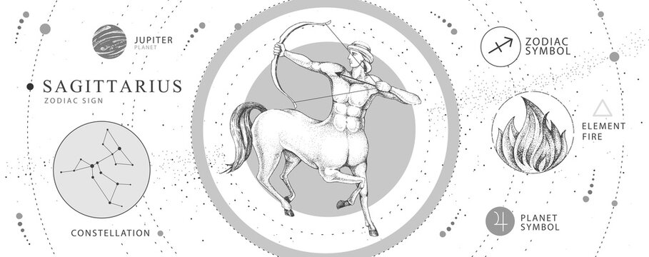Modern magic witchcraft card with astrology Sagittarius zodiac sign. Realistic hand drawing centaur with Bow and arrow. Zodiac characteristic