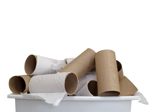 A collection of empty cardboard toilet paper tubes are displayed, at the top of a small garbage bin, set against a solid white background and with room for copy or text space above.