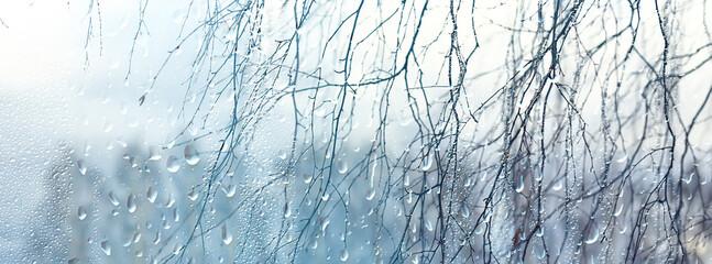 raindrops on glass, view through the window landscape autumn forest, park