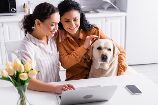 happy hispanic lesbian couple looking at laptop while sitting with labrador dog in kitchen near tulips on blurred foreground