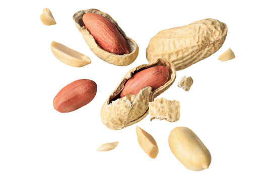 organic peanuts salted snack chapped fly in air  healthy food  on white isolated with clipping path