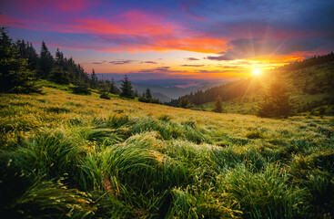 Wall Mural - Attractive evening landscape illuminated by the sunset. Carpathian mountains, Ukraine, Europe.