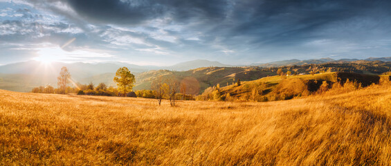 Wall Mural - Attractive sunny day in autumn mountains. Location place of Carpathian mountains, Ukraine.