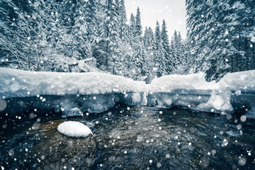 Wall Mural - Moody view of frozen stones on the river on a frosty day.