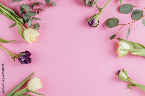 Flowers composition. Violet and light yellow tulip flowers on pink background. Valentine's day, Mother's day concept. Flat lay, top view, copy space