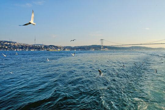 .Bosphorus