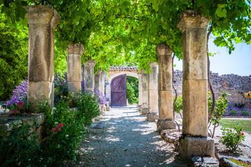 Fototapeta The lavender garden of the old abbey of Abbaye de Saint-Hilaire in Provence, France obraz