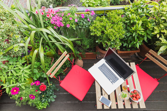 Laptop lying on balcony table surrounded by various summer herbs and flowers
