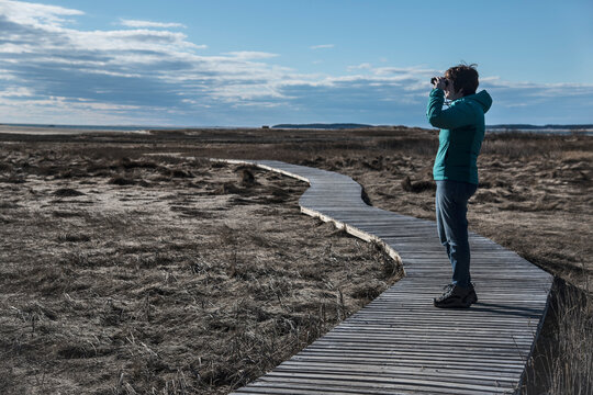 USA, Massachusetts, Cape Cod, Wellfleet, Woman standing on boardwalk and looking through binoculars