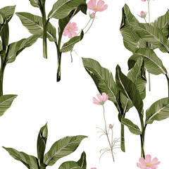 Floral seamless pattern, pink cosmos flowers and dumbcane on white