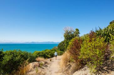 Wall Mural - Hike in New Zealand coast