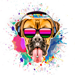illustration of a dog with colorful splashes