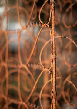 Close up of rusty springs from box spring mattress used as garden fence. Selective focus on corner, defocused background. Grunge texture. Concept for second live items or discarded garbage.
