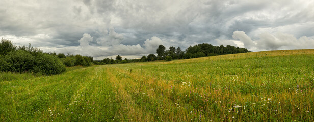 Panoramic view of green hills and trees on the edge of field. Cloudy summer rural landscape.