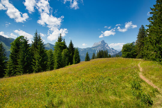 Mountain and forest panorama in the Gesäuse National Park in Styria, Austria