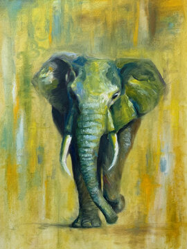 Elephant oil painting, colorful and abstract. Hand made painting.