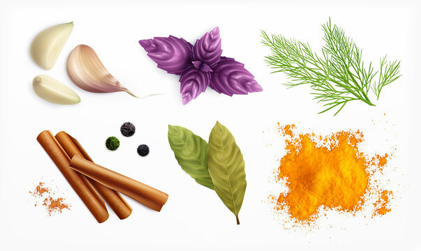 Spices And Herbs Realistic Set