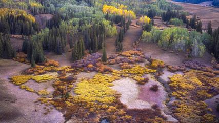 An aerial shot of a beautiful autumn landscape