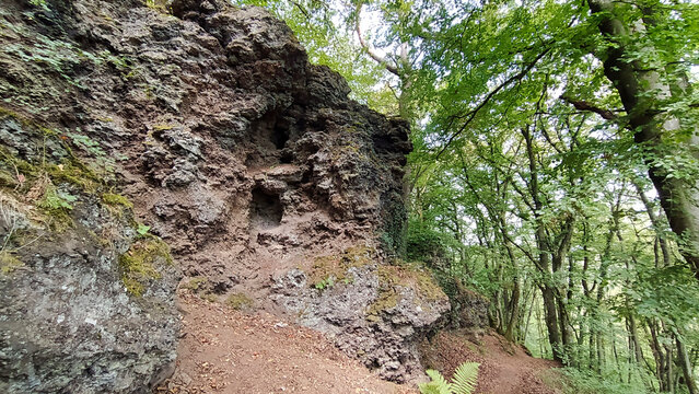 Scenery with lava rock in a forest in the Vulkaneifel in Germany