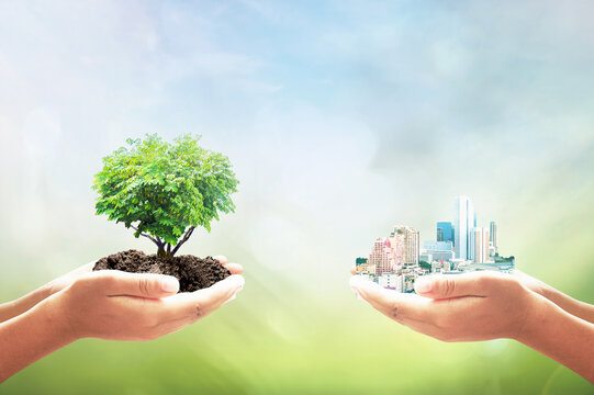 Sustainable development goals (SDGs) concept: Two human hands holding tree and city over blurred nature background