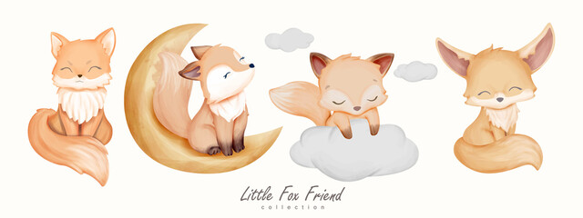 Fototapeta Little Fox Friend Animal Collection