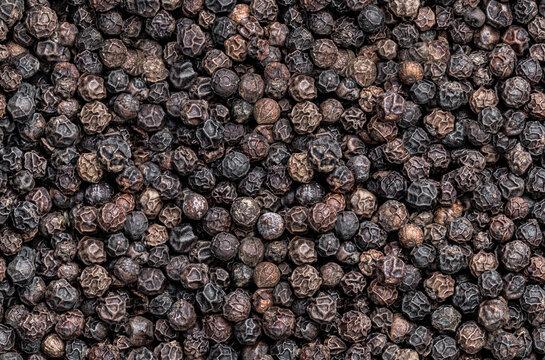 Seamless endless pattern of black pepper corn