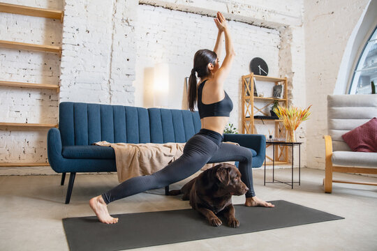 Step. Young woman working out at home during lockdown, doing yoga exercises with the dog. Beautiful woman stretching, practicing. Wellness, wellbeing, healthcare, mental health, lifestyle concept.