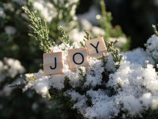 Fototapeta joy - napis z drewnianych kostek, ułożony w śniegu, język angielski  obraz