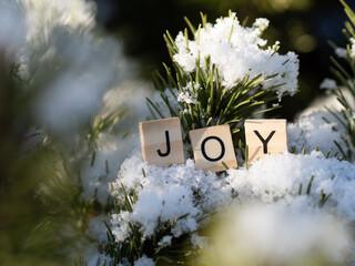 Fototapeta joy - napis z drewnianych kostek, ułożony w śniegu, emocje, język angielski  obraz