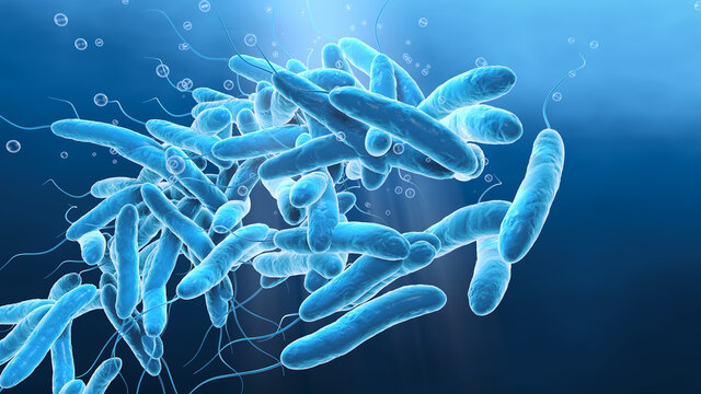 Legionella pneumophilia bacteria in water, medically 3D illustration