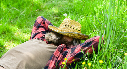 Fototapeta day dreamer. Agriculture farmer rest after day work. Worker in rural farm. farmer relax on green grass. Ecology concept. Green field in summer. Countryman on green meadow. protect green environment obraz
