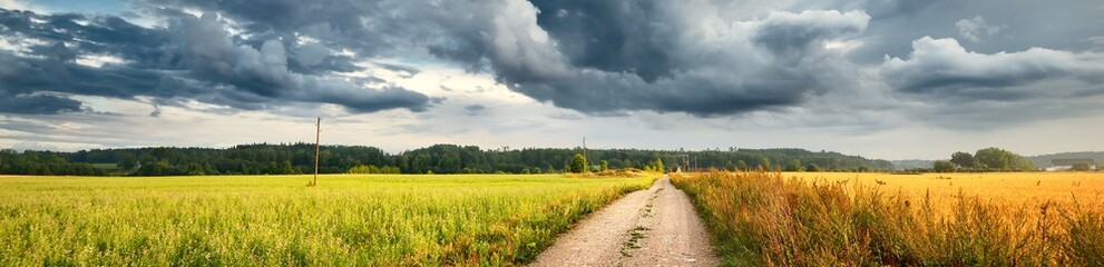 A dirt road through the agricultural field and forest under cumulus clouds after the rain, golden sunlight. Dramatic cloudscape. Idyllic rural landscape. Picturesque panoramic scenery