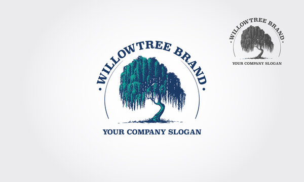 Willow Tree Vector Logo Template.That were created to highlight the organic, natural aspect of our life. This concept could be used for recycling, environment associations, landscape business, etc.