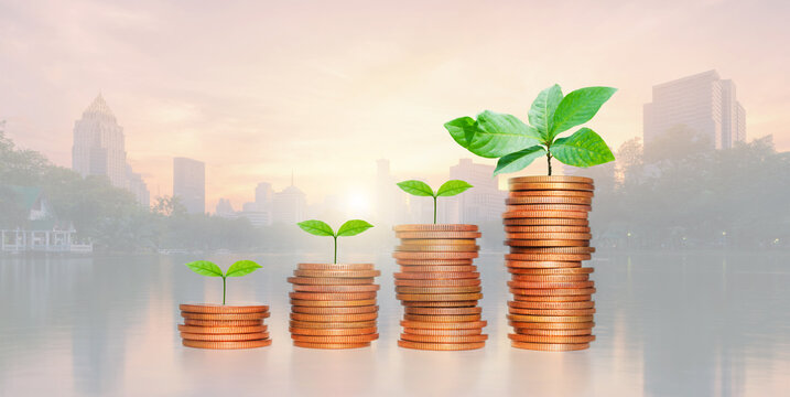 Business investment and saving money concept, Investor coin stacking and green plant growing with savings money on photo blur cityscape on sunlight background.
