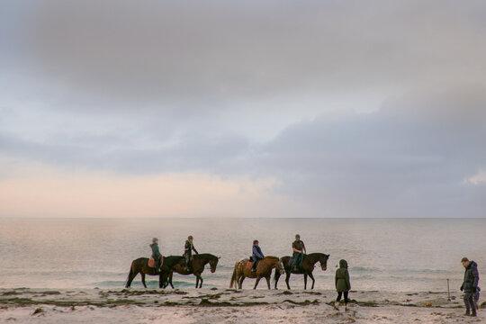 Ausritt mit den Pferden ans Meer