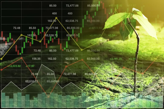 Stock financial index growth in stock market investment with graph and chart on new growth startup life of small tree image background with bright light.