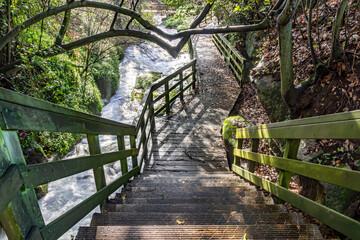 wooden path along the river in Poio, Pontevedra, Galicia, Spain Fotobehang