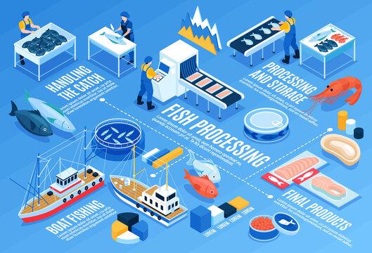 Fish Processing Horizontal Infographics