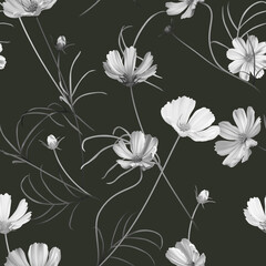 Floral seamless pattern, white cosmos flowers with leaves on dark grey