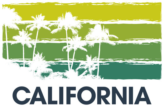 Color summer sky tropical background with exotic palm leaves and plants california banner. Art heaven floral california background