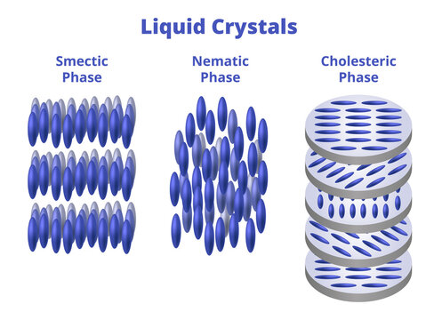 Vector scientific illustration of liquid crystals isolated on a white background. Smectic phase, nematic phase, cholesteric, or chiral nematic phase. Physical chemistry, crystals used in LCD monitors.